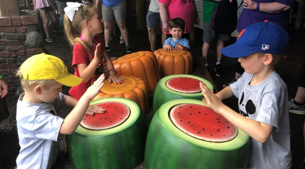 Disney World Rides Based on Movies Watermelons
