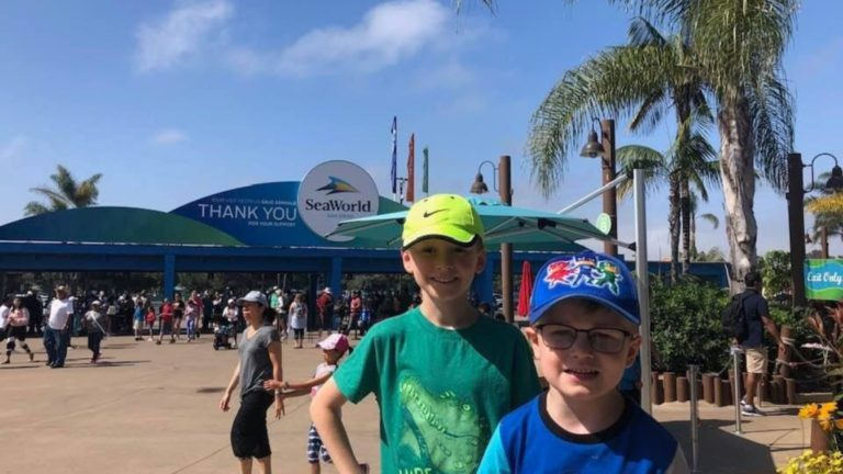 SeaWorld San Diego: The Ultimate Guide