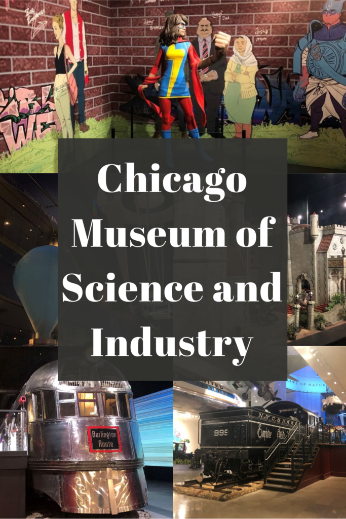 Museum of Science and Industry Tips Pin